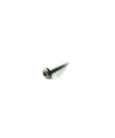 Round- headed screw, Torx drive 4 x 20